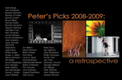 Peter's Picks: Retrospective 2008 - 2009
