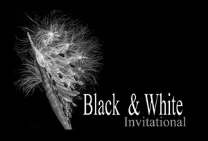 B and W Invitational Card -300