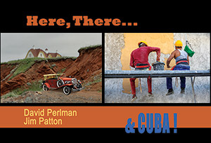 Patton-Perlman 2015 Showcard